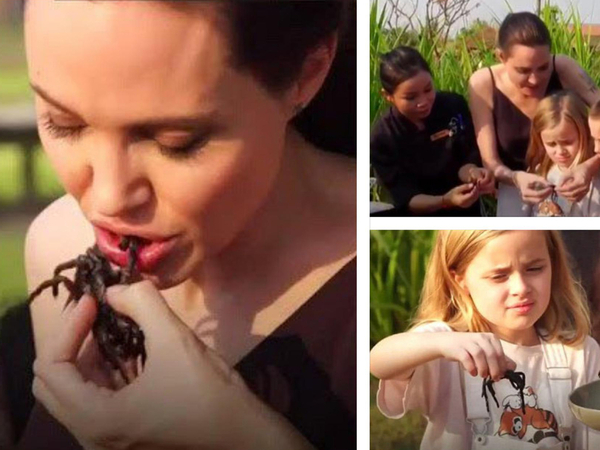 Shocking! Angelina Jolie And Her Children Eat Tarantulas