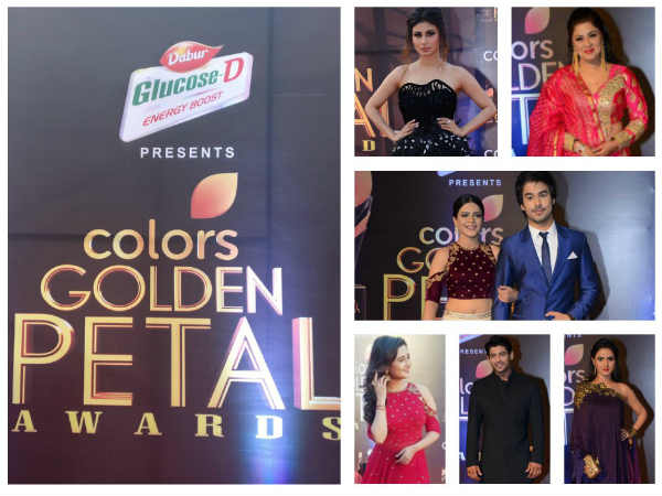 Colors Golden Petal Awards 2017: Mouni Roy, Rohan Mehra, Helly Shah & Others Walk The Red Carpet