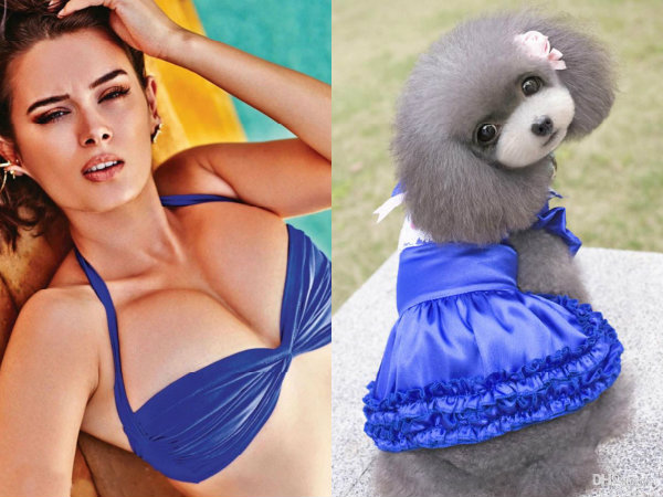 Funny Pictures Of Evelyn Sharma's Outfits Matching Little Puppies & Cute Doggies!