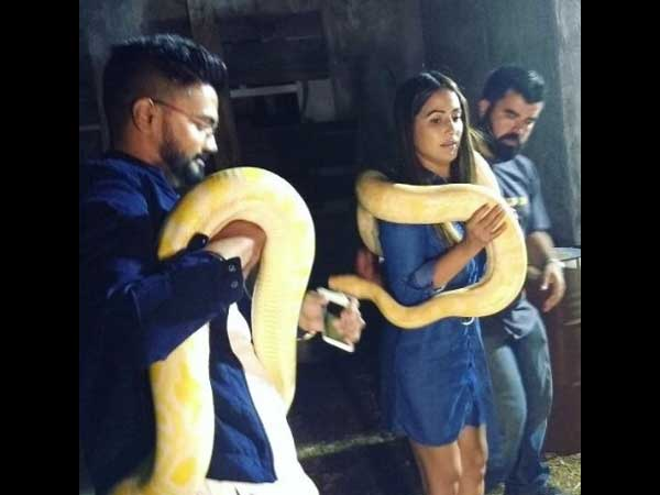 Top Three Finalists Of KKK 8 – Hina Khan