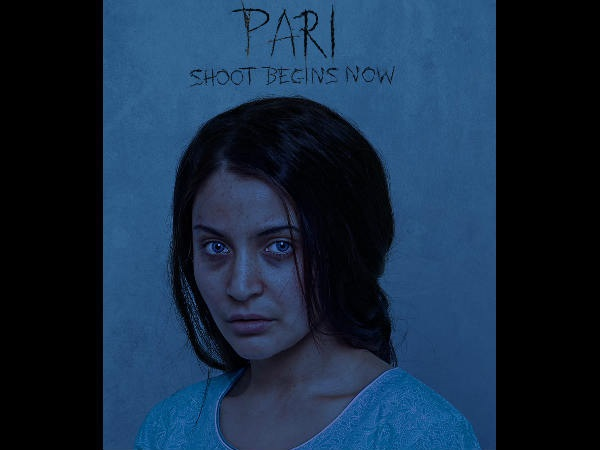 The First Look Of Pari