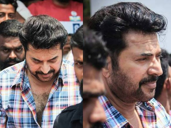 Mammootty's Role