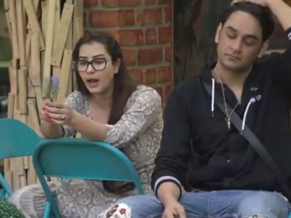 Bigg Boss 11 Spoiler: Vikas & Shilpa Fight