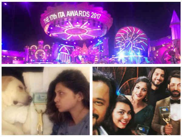 Ishqbaaz's Nakuul Mehta & Surbhi Chandna Bag Another Award