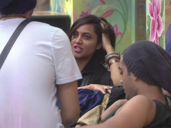 Housemates Feel Arshi & Puneesh Are Not Safe!