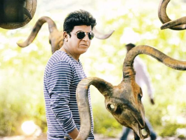 Tagaru Review Huge Treat Shivarajkumar Fans