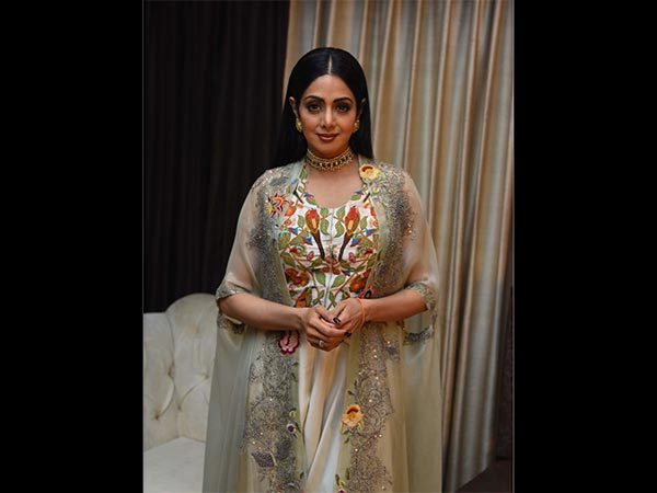 Sridevi Was Burning With Fever