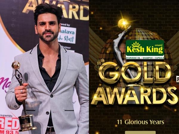 Gold Awards 2018 Gets Mixed Responses! Vivek Dahiya Trolled For Bagging The Fit Actor Award!