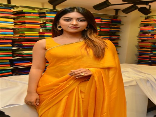 Anu Emmanuel Comments On The Agnyaathavaasi Debacle Admits She Had This Doubt