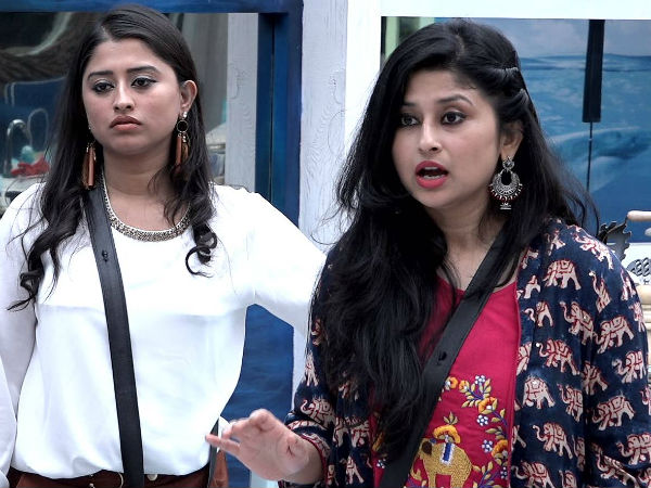 Bigg Boss 12 Contestants Jodi: Saba Khan and Somi Khan