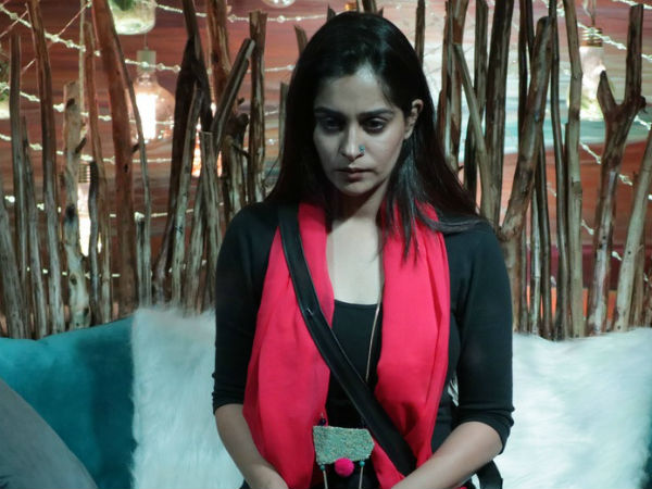 Dipika Clarifies About The Bond She Shares With Sree