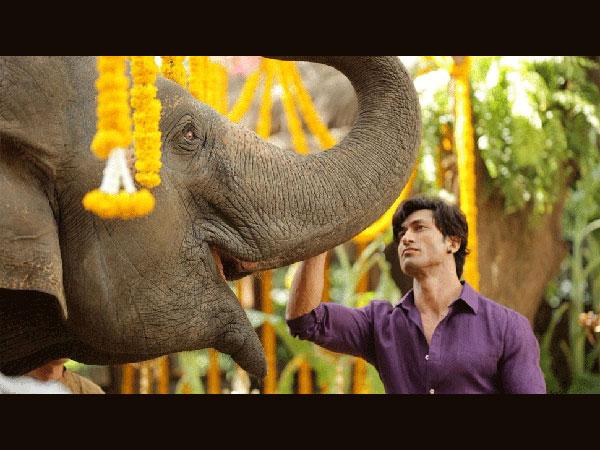 Vidyut Jammwal: Junglee Is A Must Watch For Families & Children!