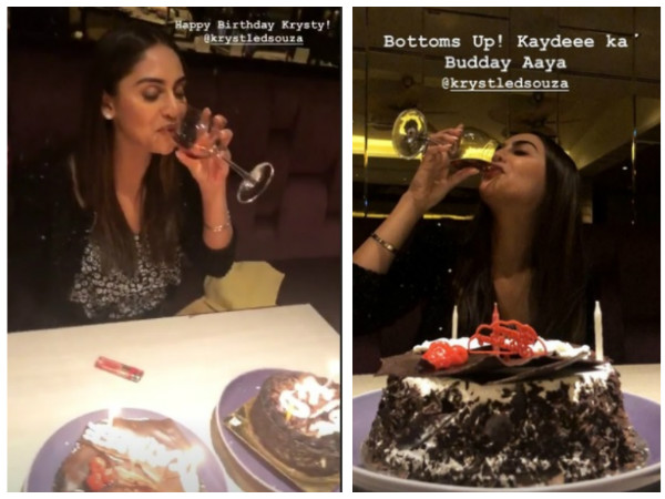 Krystle D'souza Celebrates Her Birthday With Friends