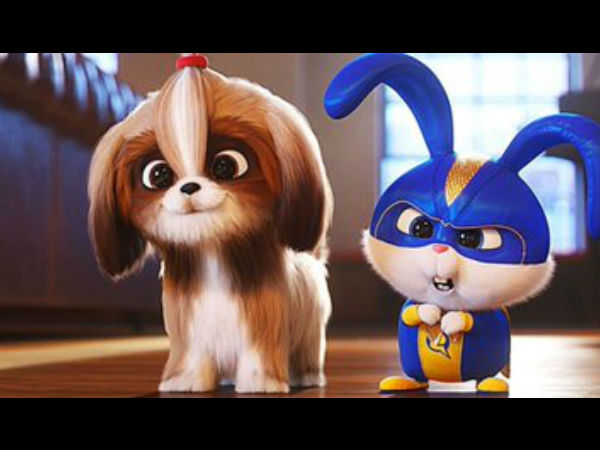 The Secret Life Of Pets 2 Full Movie Leaked In Hindi On Tamilrockers