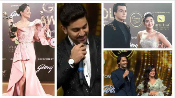 Gold Awards 2019 Winners List Helly Shah Zain Imam Hina Shivangi Joshi Mohsin Khan Others Win Big