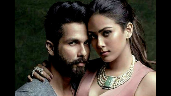 Shahid On Mira Entering Films: It's Completely Her Decision