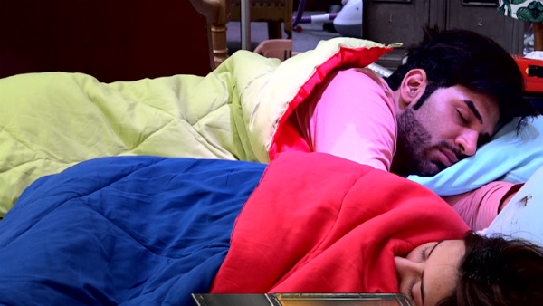 Bigg Boss 13: Siddharth Shukla & Asim Riaz Fight; Bigg Boss To Punish Housemates For Falling Asleep