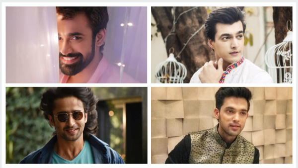 Best Of 2019: Pearl V Puri To Parth Samthaan - 7 Actors Who Ruled Television This Year