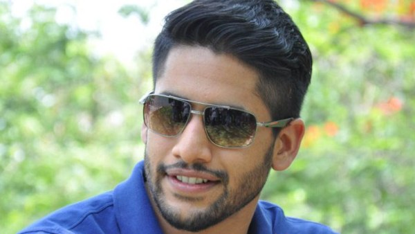 Naga Chaitanya's Fan Dives Into Godavari Canal To Meet Him