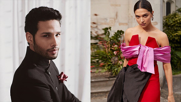 Gully Boy Actor Siddhant Chaturvedi To Romance Deepika Padukone In A Film?