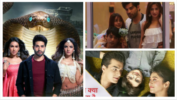 Latest TRP Ratings: Naagin 4 Drops To Second Place; Bigg Boss 13 Witnesses Major Jump