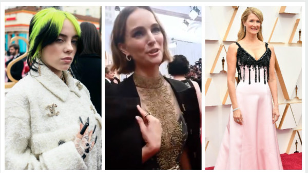 Also Read: Oscars 2020 Red Carpet: Hollywood Stars Dazzle In Style (Pictures)
