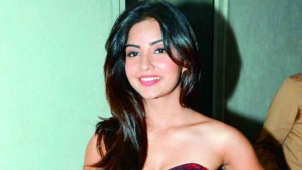 ALSO READ: Kashmira Pardeshi To Make Her Kannada Film Debut Opposite Nikhil Kumaraswamy?