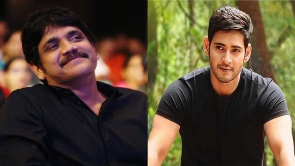 Nagarjuna Akkineni Or Mahesh Babu: Who Will Be The Host Of Bigg Boss 4 Telugu?