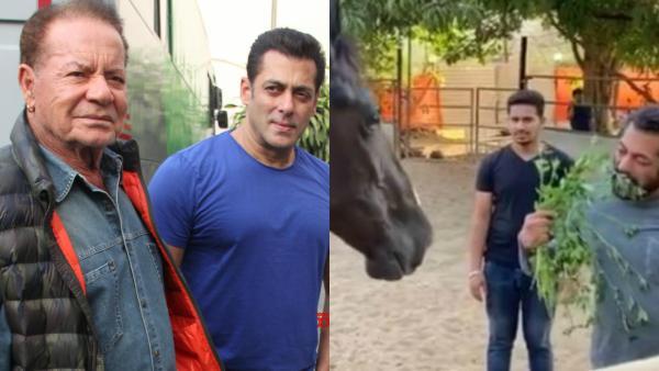 Salman Khan Enjoys Breakfast With Horse