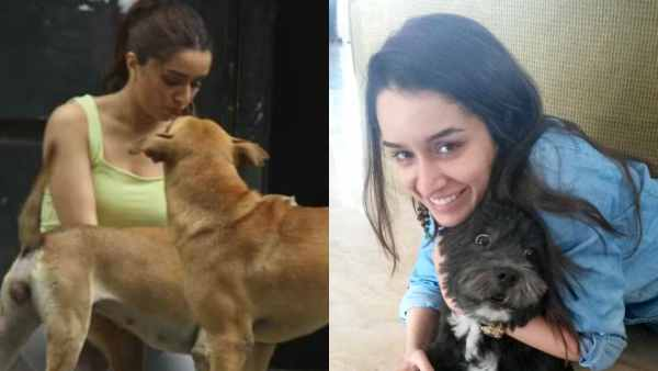 ALSO READ: Shraddha Kapoor Contributes To Help Feed Stray Animals During Coronavirus Lockdown