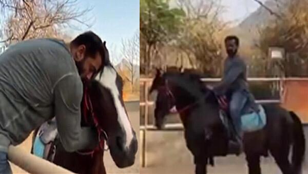 Salman Showers His Horse With Love At His Farm House