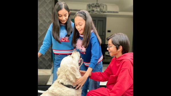 covid-19-farah-khan-daughter-raises-rs-2-5-lakh-to-feed-homeless-stray-animals