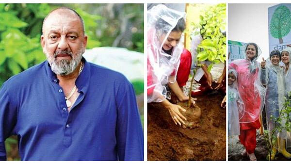 Bollywood Celebs Extend Wishes On World Environment Day