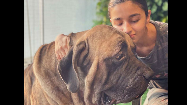 alia-bhatt-bonds-with-ranbir-kapoor-s-pet