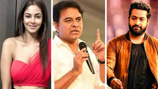 Meera Chopra Takes The Jr NTR Fans' Hate Campaign Issue To KTR, The Minister Assures Stern Action