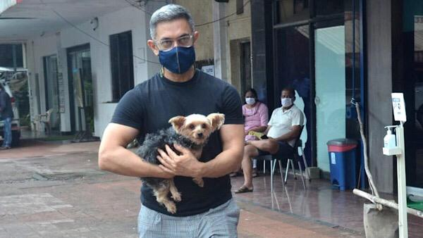 Aamir Khan Spotted Outside A Pet Clinic; The Laal Singh Chaddha Actor Flaunts Grey Hair