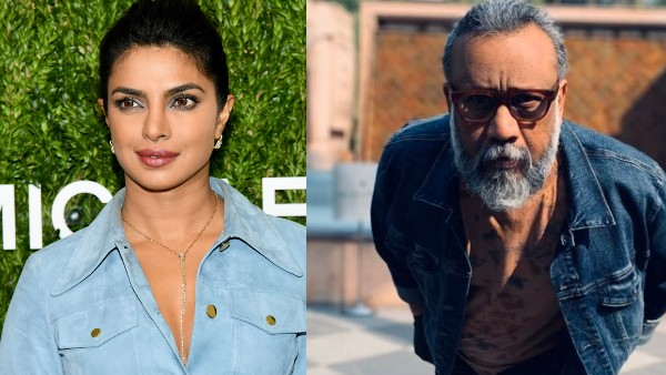 Priyanka Chopra Reacts To Anubhav Sinha's Shout-Out: Thappad Nahi, Kaam Se Maaro