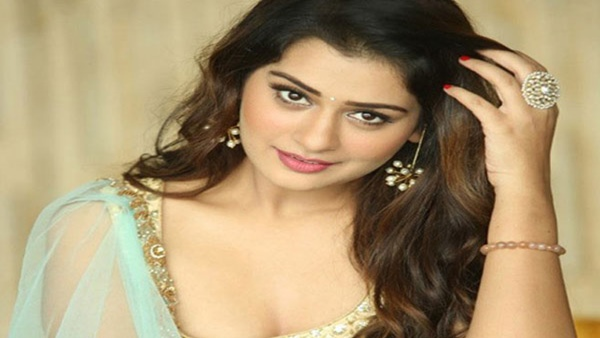 Payal Rajput Is Not A Part Of Pushpa!