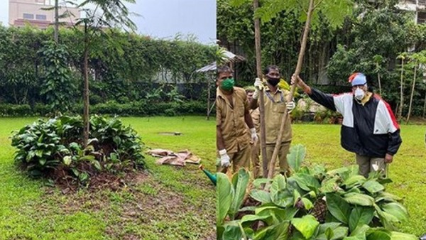 Amitabh Bachchan Steps Out For The First Time Post COVID-19 Recovery; Plants Sapling In Mom's Memory