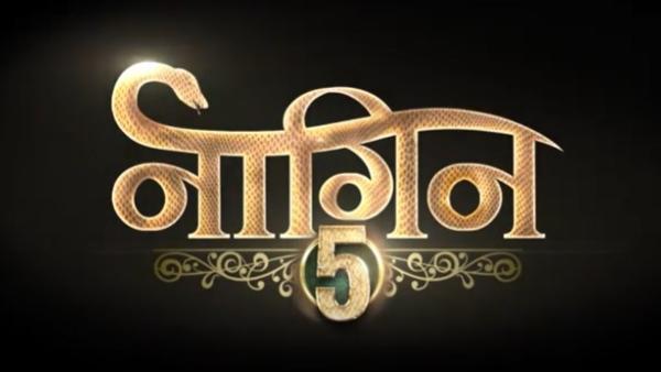Naagin 5 Cast