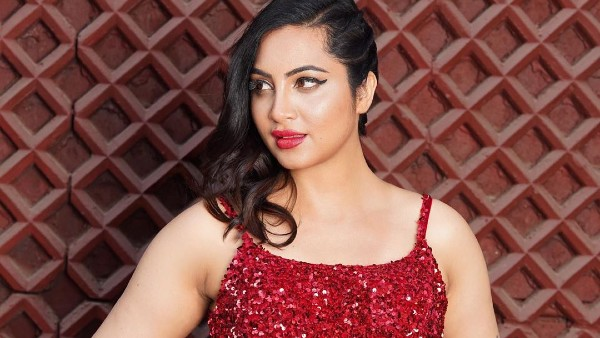 Arshi Khan Doesnt Want To Go To Bigg Boss House; Wants To Break Away From Her Bigg Boss Image