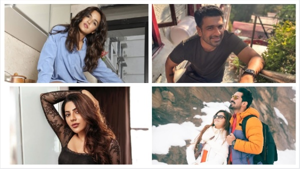 Also Read: Bigg Boss 14 CONFIRMED Contestants List: Eijaz Khan, Rubina, Abhinav & Others To Enter Salman's Show