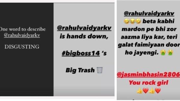 Bigg Boss 14: Karan Patel Lends His Support To Jasmin Bhasin; Calls Rahul Vaidya The Biggest Trash