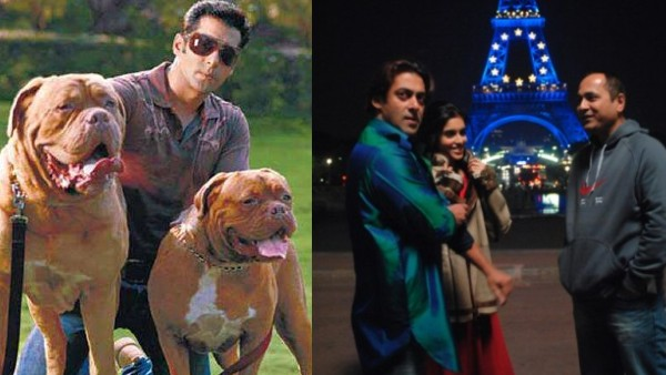 Salman Shot For London Dreams After His Dogs' Funeral