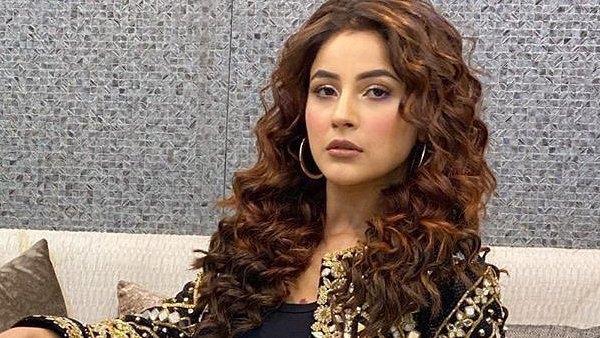 Shehnaaz's Dance Video Goes Viral