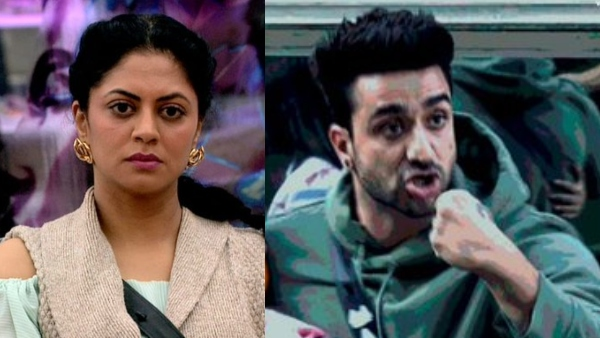 BB 14 Nov 24 Highlights: Aly Nominted, Kavita Breaks Down