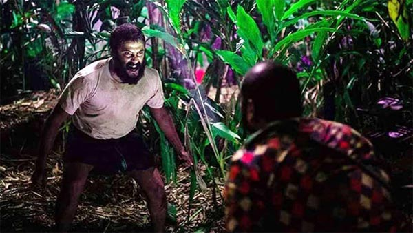 Lijo Jose Pellissery's Jallikattu Is India's Official Entry To The Oscars 2021!