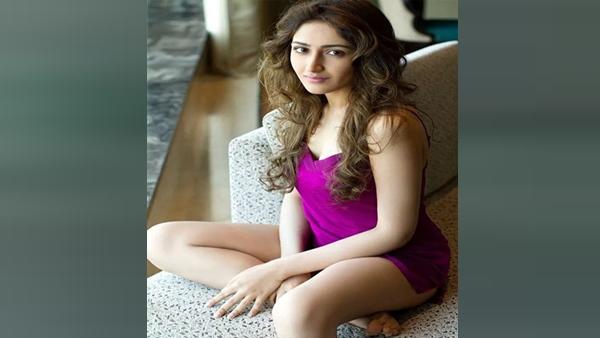 BB3: Sayyeshaa Saigal To Make Her Tollywood Comeback With Nandamuri Balakrishna Film