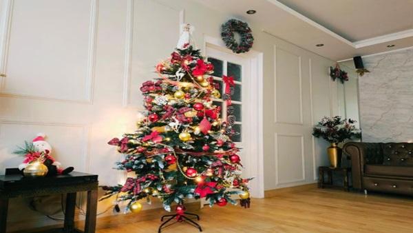 Theme Of Christmas Celebration