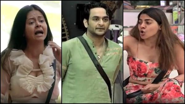 Also Read: Bigg Boss 14: Nikki Tamboli Accuses Vikas Gupta Of Kissing Girls, Devoleena Bhattacharjee Reacts; Watch Promo